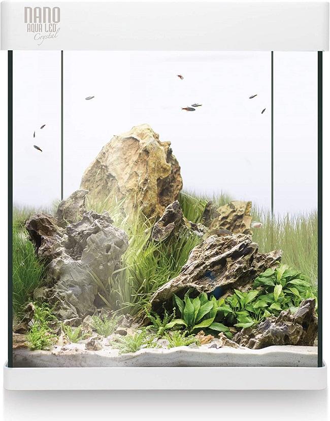 descripcion acuario ica
