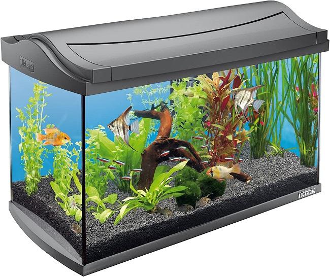 descripcion acuario tetra aquart