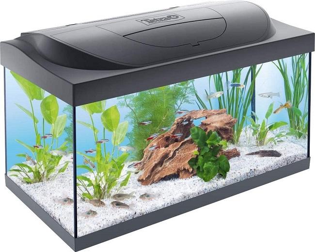 descripcion acuario tetra starter